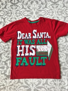 Tricko Santa It was All His Fault